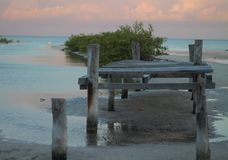 Dock in disrepair. During low tide in Isla blanca Park, just north of Cancun, Mexico, it`s hard to imagine the original use of this that is now in disrepair Stock Image