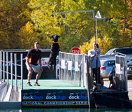 Dock Dog National Championship Big Air Event Stock Photo