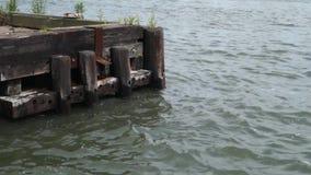 New Yorkk City Dock stock video