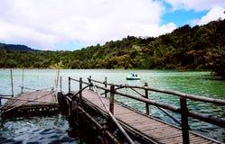 Dock en bambou Photos stock