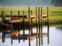 Dock et oiseaux de Refelcting Photos libres de droits