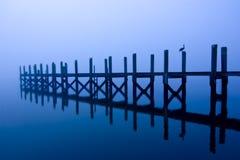 Dock et oiseaux la nuit Images stock