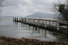 A dock extends out over a flooded lake Royalty Free Stock Photos