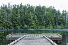 Dock on Heart Lake Stock Images