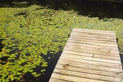 Dock im See Stockbilder