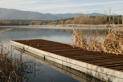 Dock in a lake. Side view of a dock with a beautiful landscape on the background Stock Images