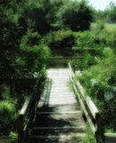Dock on lake. With greenery surrounding it. Also shows walkway down to dock royalty free stock image