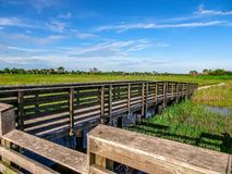 Pine Glades Natural Area in Florida Swamps. Dock over the marsh in a Florida Swamp Royalty Free Stock Photography