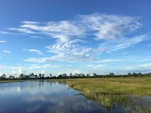 Pine Glades Natural Area in Florida Swamps. Dock over the marsh in a Florida Swamp Royalty Free Stock Image