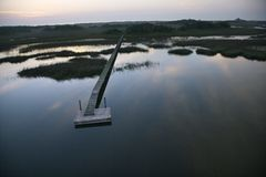 Dock over wetland. Royalty Free Stock Images
