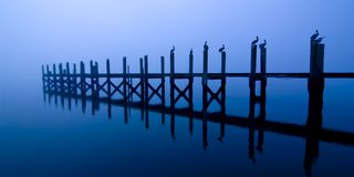 Dock with pelicans at night Royalty Free Stock Photos