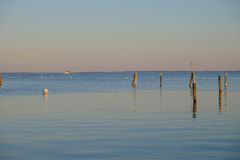 Dock pilings on Penobscot Bay inside the Rockland Breakwater and Royalty Free Stock Image