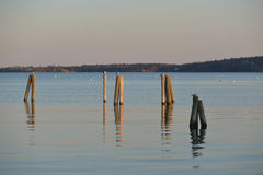 Dock pilings on Penobscot Bay inside the Rockland Breakwater and Royalty Free Stock Images