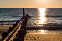 Dock Pilings at Sunrise at Buckroe Beach Royalty Free Stock Image