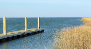 Dock with sea Grass Stock Photo