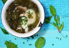 Dock soup. On the blue background stock photos