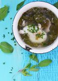 Dock soup. On the blue background Stock Photo