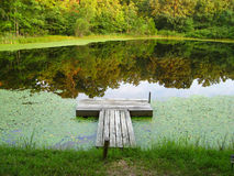 Dock on a Tranquil Pond. A dock beckons as the evening light reflects on a tranquil pond Royalty Free Stock Photos