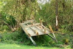Dock in trees. Piece of a dock thrown into trees by hurricane Irene Stock Images
