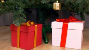 Dockakamerarörelse längs julgranen Under trädgåvaaskarna med guld- pilbågar Förbereda sig för julferie stock video