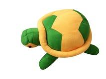 Dockasköldpadda royaltyfri bild