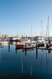 Docked Boats in Florida Marina Royalty Free Stock Photography