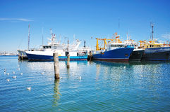 Docked Boats at Fremantle Marina With Blue Sky Royalty Free Stock Photos