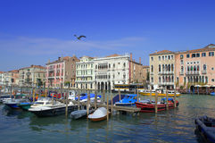 Docked boats in Venice Stock Photography