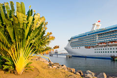 Docked cruise ship Stock Photography