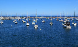 Docked. Dozens of boats are anchored at a marina in Monterey, California stock photography