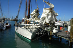 Docked sailboat. In key west Florida blue skies and blue water Stock Images