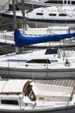 Docked sailboats Royalty Free Stock Photo