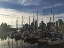 Docked Sails. Sailing boats docked at sunset lined up together in Vancouver, British Royalty Free Stock Photo