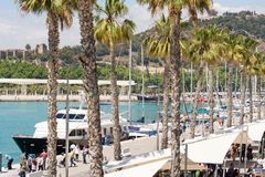 Malaga port. A docked yacht and palm trees along a promenade in Malaga port, Spain Royalty Free Stock Image