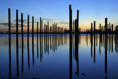 Docking poles at sunrise Stock Photos