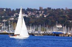 Docking yachts. White sail yacht docking in lake pier among many masts, horizontal Royalty Free Stock Images