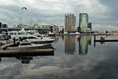 Melbourne Docklands Stock Photography