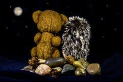 Dockor av en björn och ett igelkottsammanträde på stenar Arkivfoto