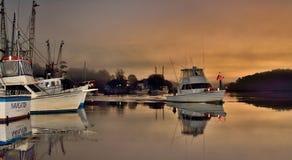 Docks stock images