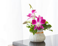 Docorate of orchid flowers. Royalty Free Stock Images