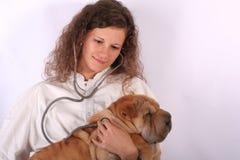 Docteur animal 5 Images libres de droits