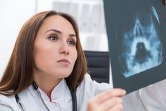 Docteur au travail Image stock