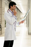 Docteur avec le rayon X médical photos stock