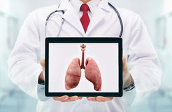 Docteur avec le stéthoscope dans un hôpital poumons sur le comprimé photos stock