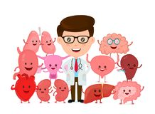 Docteur avec les organes internes humains Vecteur Photographie stock