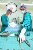 docteur de deux vétérinaires travaillant dans la salle d'opération Image stock