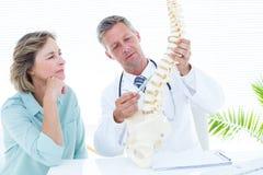 Docteur dirigeant l'épine anatomique Image libre de droits