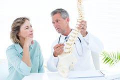 Docteur dirigeant l'épine anatomique Photos libres de droits