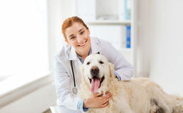 Docteur heureux avec le chien de chien d'arrêt à la clinique de vétérinaire images libres de droits
