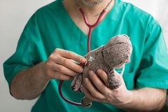 Docteur masculin avec la barbe dans les prises vertes de costume dans des mains et les examins avec le chat gris de jouet de stét photo stock